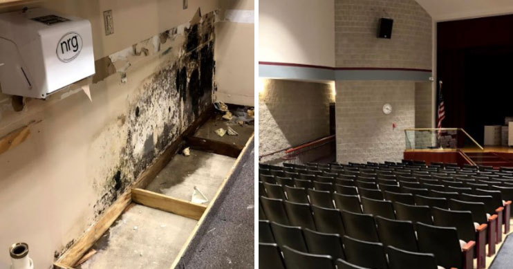 before after mold remediation in public schools