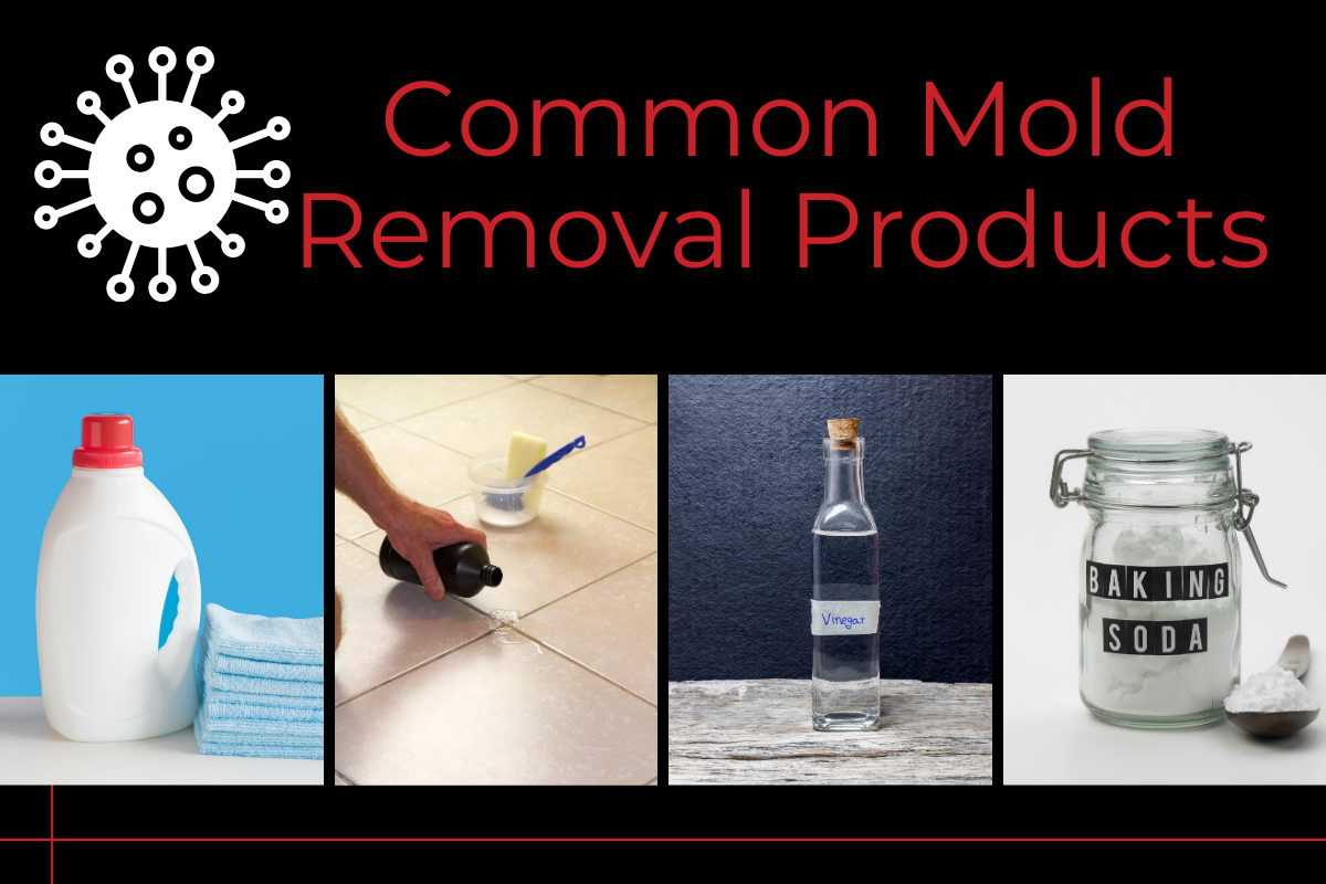 Common mold removal products