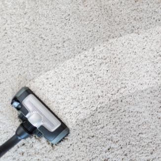 wet carpeting